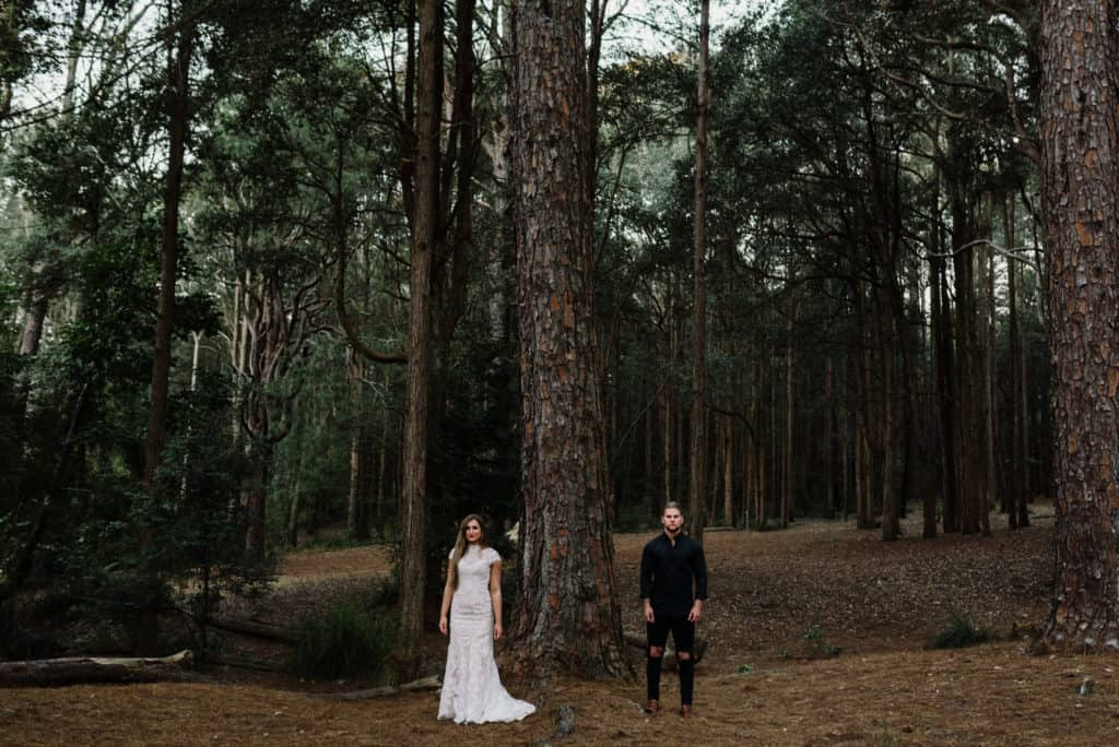 Bride and groom stand amongst giant pine trees in forest elopement