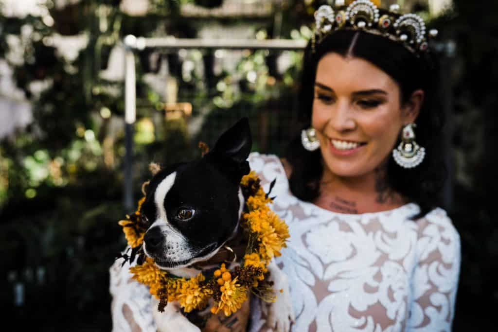 beautiful floral crown on cute boston dog as bride and groom celebrate wedding
